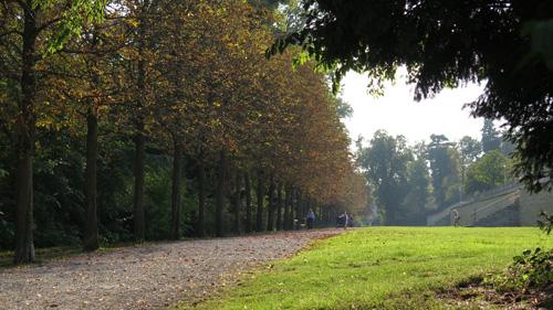 Herbstgold Eisenstadt